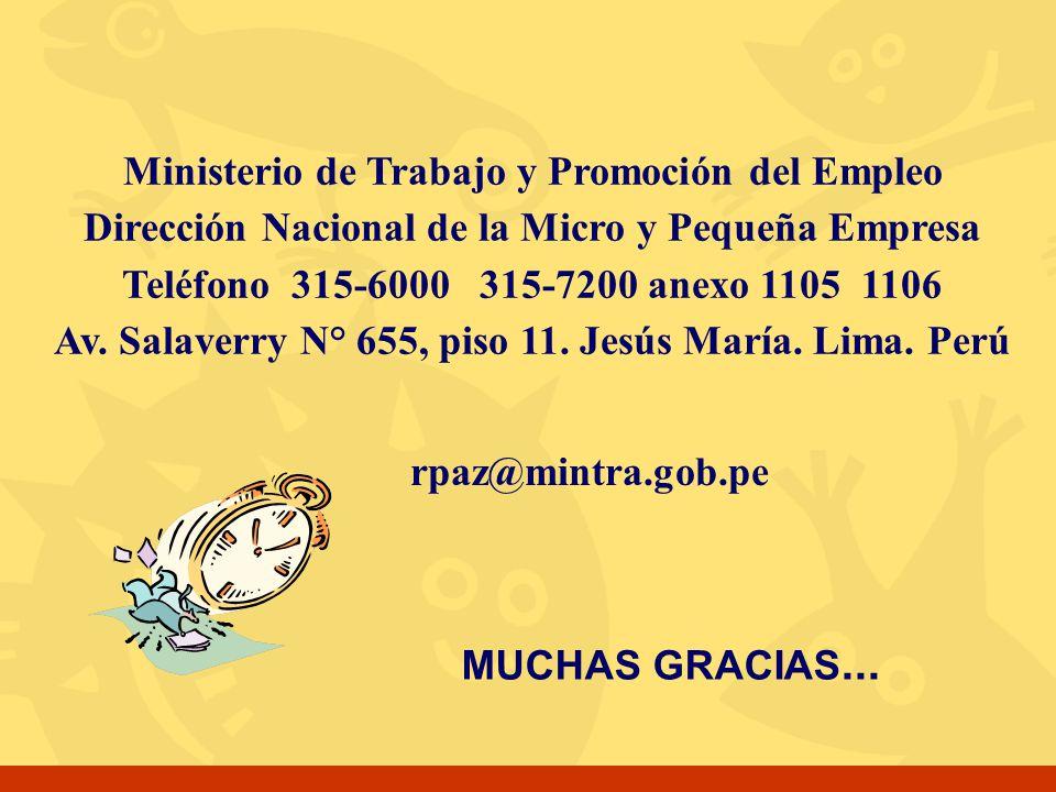 MUCHAS GRACIAS... rpaz@mintra.gob.pe Ministerio de Trabajo y Promoción del Empleo Dirección Nacional de la Micro y Pequeña Empresa Teléfono 315-6000 3