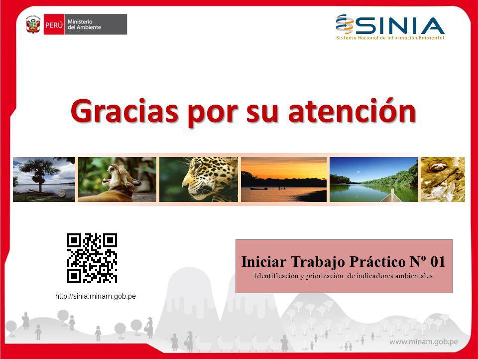 Gracias por su atención Iniciar Trabajo Práctico Nº 01 Identificación y priorización de indicadores ambientales http://sinia.minam.gob.pe