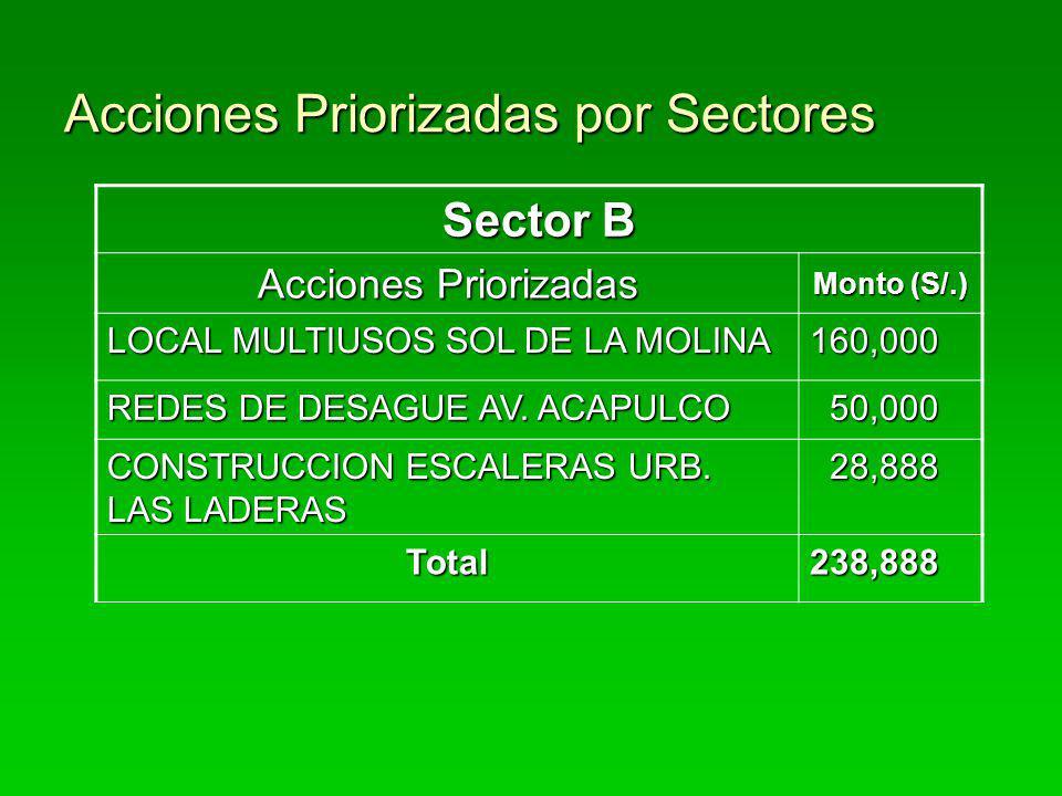 Acciones Priorizadas por Sectores Sector B Acciones Priorizadas Monto (S/.) LOCAL MULTIUSOS SOL DE LA MOLINA 160,000 REDES DE DESAGUE AV. ACAPULCO 50,