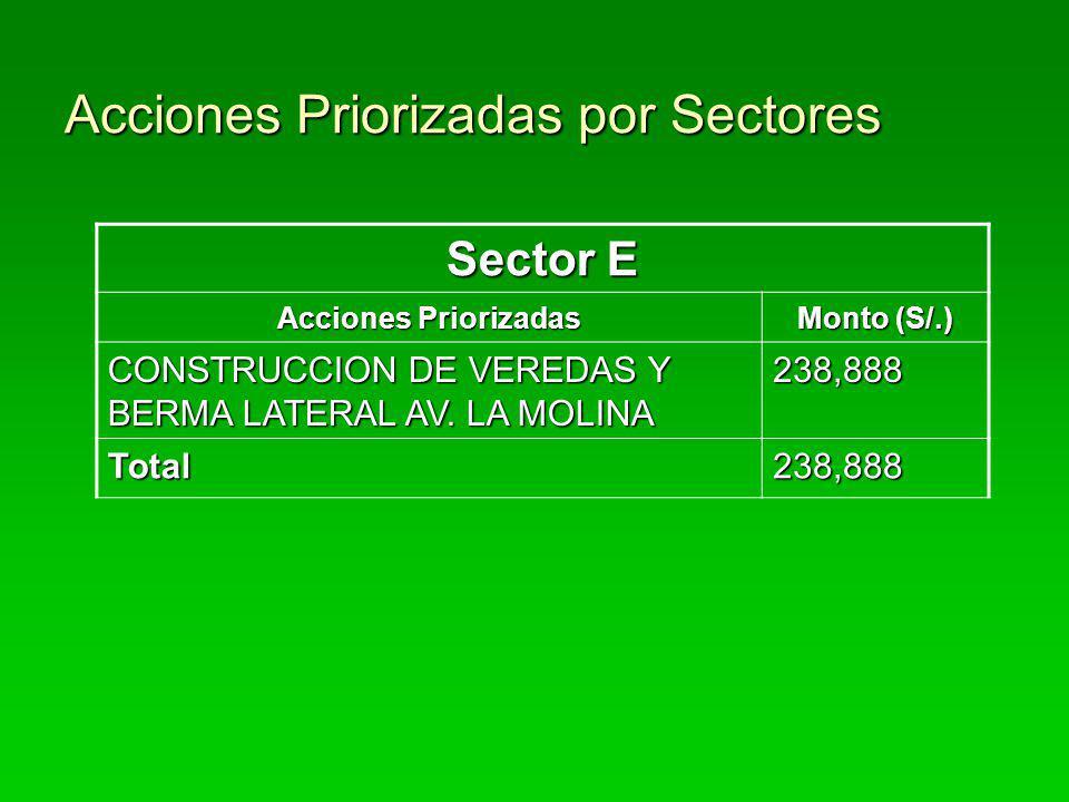 Acciones Priorizadas por Sectores Sector E Acciones Priorizadas Monto (S/.) CONSTRUCCION DE VEREDAS Y BERMA LATERAL AV. LA MOLINA 238,888 Total238,888