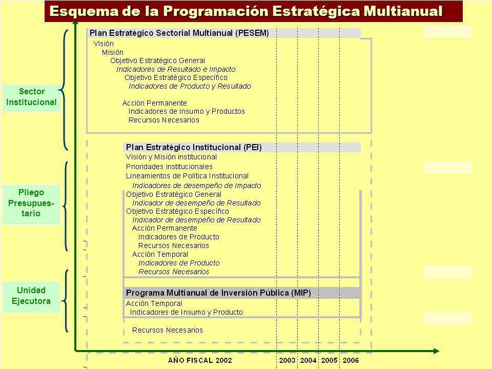 Sector Institucional Pliego Presupues- tario Unidad Ejecutora Esquema de la Programación Estratégica Multianual