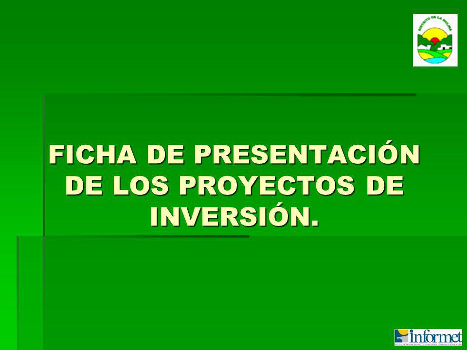 FICHA DE PRESENTACIÓN DE LOS PROYECTOS DE INVERSIÓN.