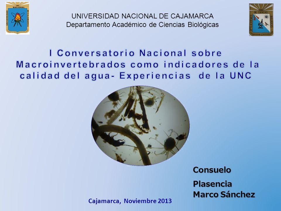UNIVERSIDAD NACIONAL DE CAJAMARCA Departamento Académico de Ciencias Biológicas Cajamarca, Noviembre 2013 Consuelo Plasencia Marco Sánchez