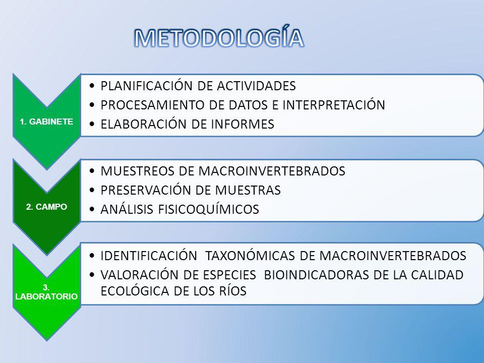 1. GABINETE PLANIFICACIÓN DE ACTIVIDADES PROCESAMIENTO DE DATOS E INTERPRETACIÓN ELABORACIÓN DE INFORMES 2. CAMPO MUESTREOS DE MACROINVERTEBRADOS PRES