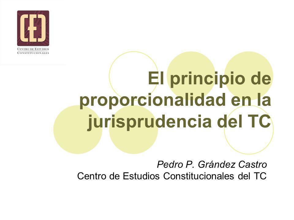 El principio de proporcionalidad en la jurisprudencia del TC Pedro P.