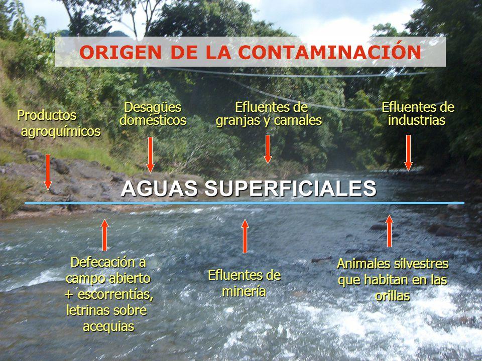 MANEJO INTEGRAL DE LA CALIDAD DEL AGUA POTABLE Riesgo a la Salud Consumo Seguro Protección de la Fuente Potabilización Sistema de Distribución Desde la fuente hasta el suministro ENFOQUE MULTIBARRERAS Programa Nacional de Vigilancia de la calidad del agua para consumo humano