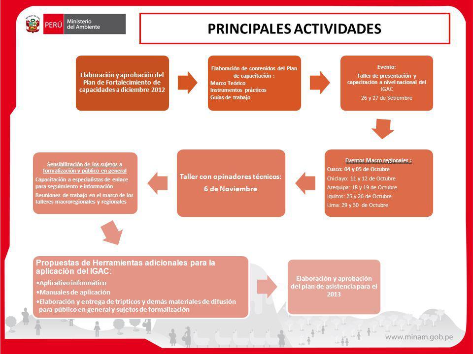 PRINCIPALES ACTIVIDADES Elaboración y aprobación del Plan de Fortalecimiento de capacidades a diciembre 2012 Elaboración de contenidos del Plan de cap