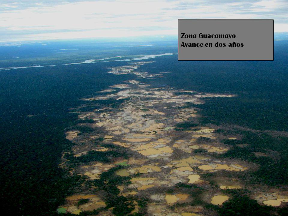 5 Zona Guacamayo Avance en dos años