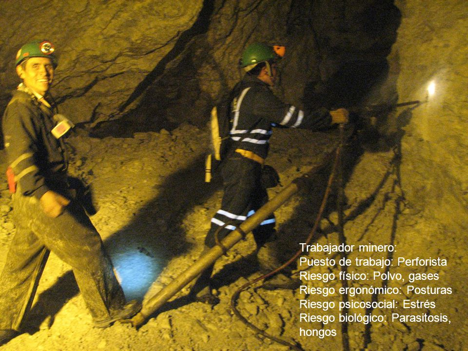 Trabajador minero: Puesto de trabajo: Perforista Riesgo físico: Polvo, gases Riesgo ergonómico: Posturas Riesgo psicosocial: Estrés Riesgo biológico:
