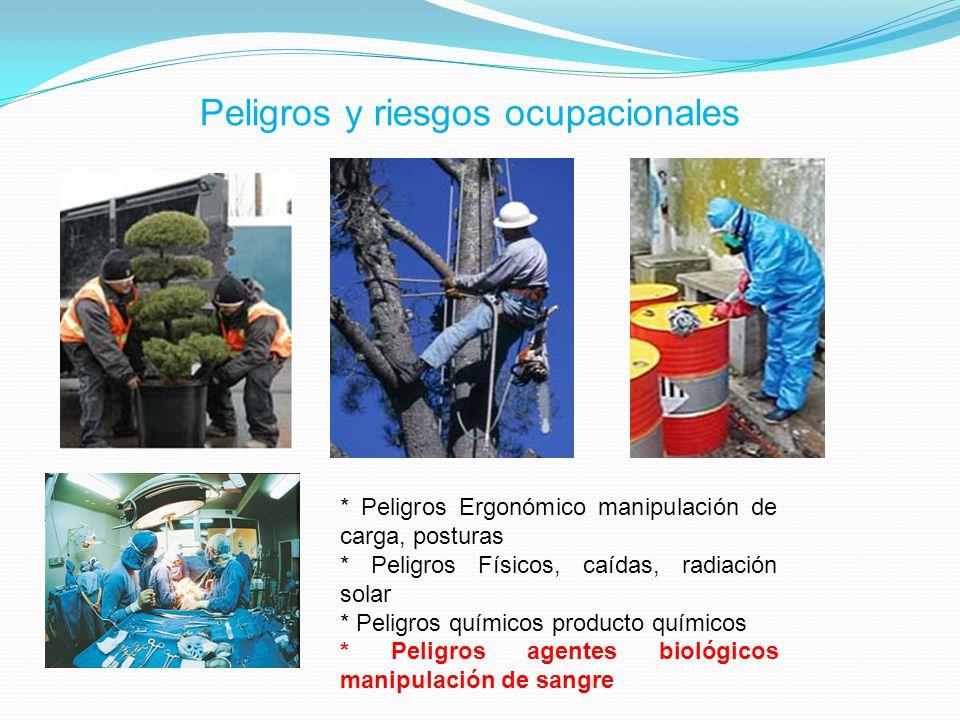 PELIGROS - RIESGOS PELIGRO AGENTE BIOLOGICO TBC-VHB RUIDO POSTURAS INADECUADAS POLVOS RIESGO TUBERCULOSIS HEPATITIS VIRAL B SORDERA ENFERMEDAD OSTEOARTICULAR ENFERMEDAD RESPIRATORIAS NEUMOCONIOSIS