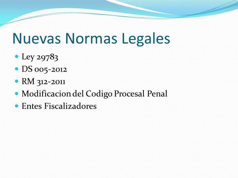 Nuevas Normas Legales Ley 29783 DS 005-2012 RM 312-2011 Modificacion del Codigo Procesal Penal Entes Fiscalizadores