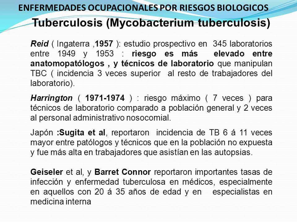 Tuberculosis (Mycobacterium tuberculosis) Reid ( Ingaterra,1957 ): estudio prospectivo en 345 laboratorios entre 1949 y 1953 : riesgo es más elevado e