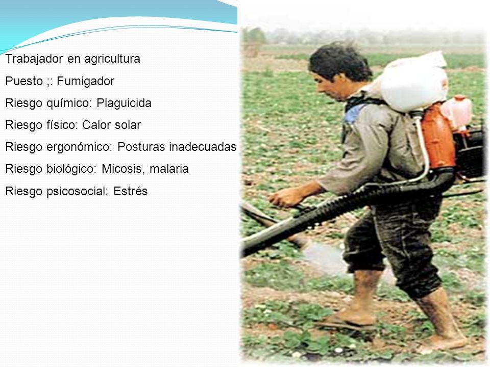 Trabajador en agricultura Puesto ;: Fumigador Riesgo químico: Plaguicida Riesgo físico: Calor solar Riesgo ergonómico: Posturas inadecuadas Riesgo bio