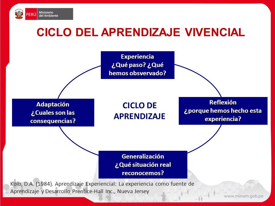 CICLO DEL APRENDIZAJE VIVENCIAL CICLO DE APRENDIZAJE Experiencia ¿ Qué paso.
