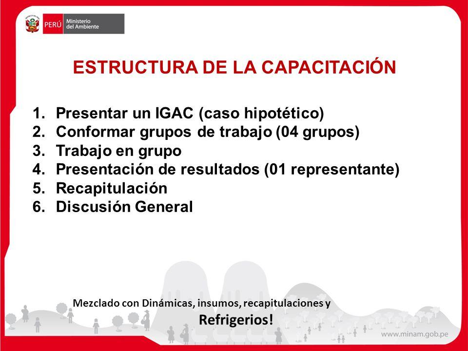 ESTRUCTURA DE LA CAPACITACIÓN Mezclado con Dinámicas, insumos, recapitulaciones y Refrigerios.