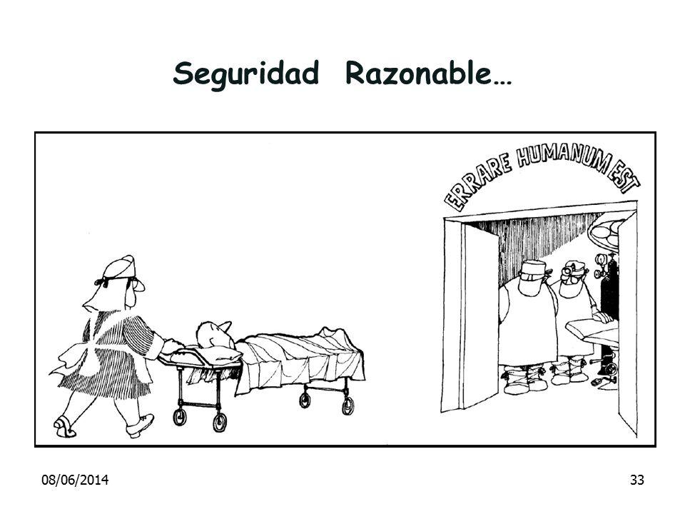 Seguridad Razonable… 08/06/201433