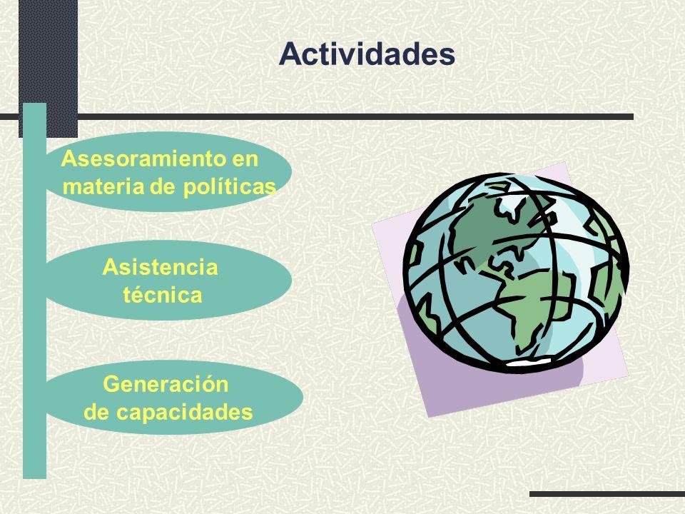 Asesoramiento en materia de políticas Generación de capacidades Asistencia técnica Actividades