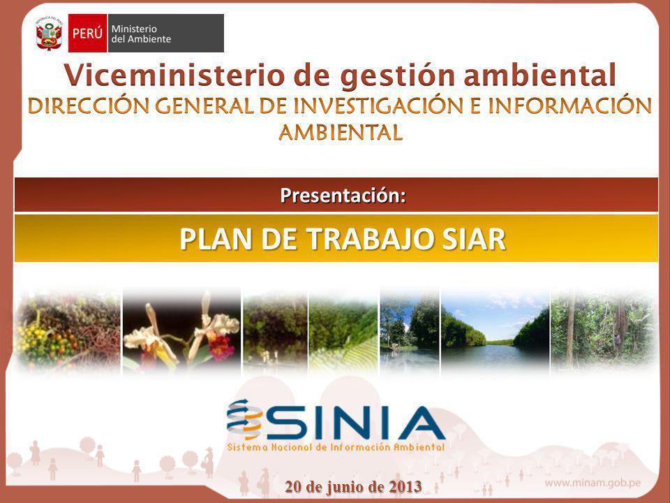 PLAN DE TRABAJO SIAR Presentación: 20 de junio de 2013
