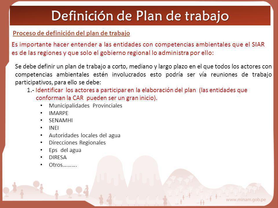 Definición de Plan de trabajo Proceso de definición del plan de trabajo Es importante hacer entender a las entidades con competencias ambientales que