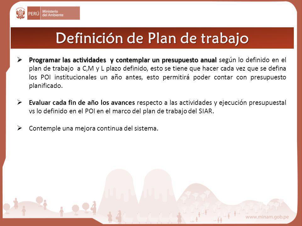 Definición de Plan de trabajo Programar las actividades y contemplar un presupuesto anual Programar las actividades y contemplar un presupuesto anual