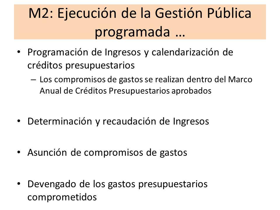 M2: Ejecución de la Gestión Pública programada Pagos de gastos devengados Administración de cuentas y conciliaciones bancarias Gestion del financiamiento del sector público Procesos administrativos auxiliares (Abastecimiento, Recursos Humanos)