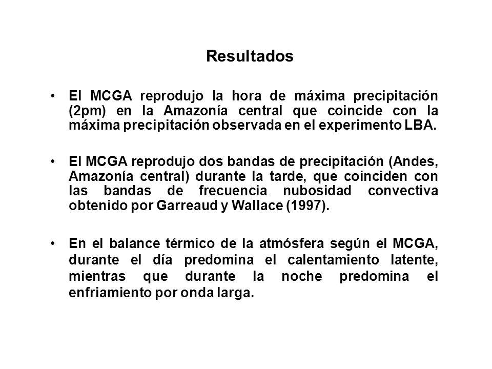El MCGA reprodujo la hora de máxima precipitación (2pm) en la Amazonía central que coincide con la máxima precipitación observada en el experimento LB