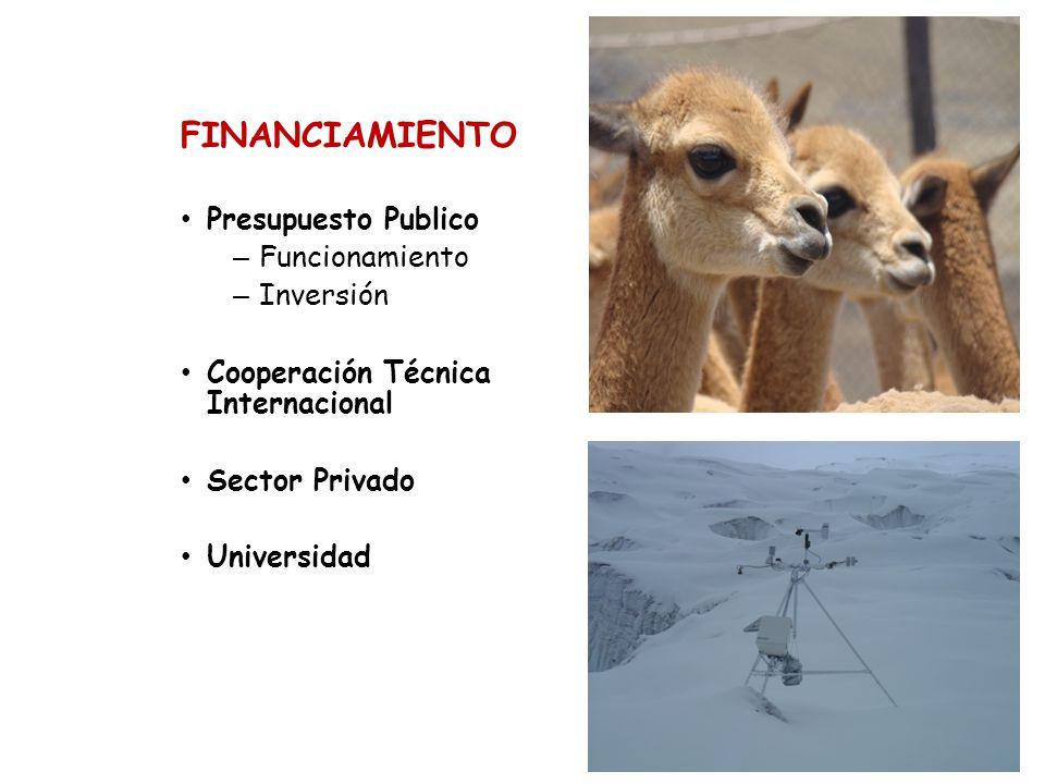 FINANCIAMIENTO Presupuesto Publico – Funcionamiento – Inversión Cooperación Técnica Internacional Sector Privado Universidad
