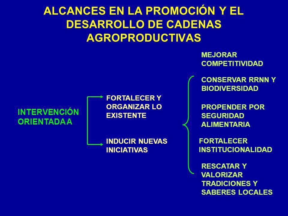ALCANCES EN LA PROMOCIÓN Y EL DESARROLLO DE CADENAS AGROPRODUCTIVAS INTERVENCIÓN ORIENTADA A FORTALECER Y ORGANIZAR LO EXISTENTE INDUCIR NUEVAS INICIA