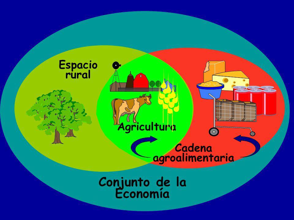 Conjunto de la Economía Espacio rural Agricultura Cadena agroalimentaria