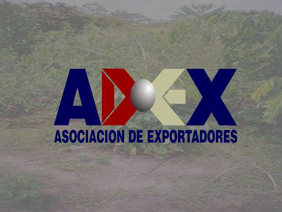 METASMETAS EXPORTACIONES: 1000 MILLONES AUMENTO DE FRONTERA AGRICOLA:300.000 NUEVAS HECTAREAS NUEVOS PUESTOS DE TRABAJO1000,000 NUEVOS PRODUCTOS EXPORTABLES:20 NUEVA VISION DE COMPETITIVIDAD EN EL AGRO