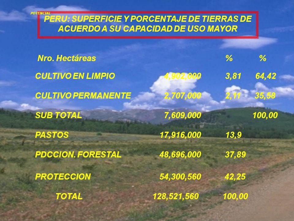 PERU: SUPERFICIE Y PORCENTAJE DE TIERRAS DE ACUERDO A SU CAPACIDAD DE USO MAYOR TOTAL 128,521,560 100,00 CULTIVO EN LIMPIO 4,902,000 3,81 64,42 CULTIVO PERMANENTE 2,707,000 2,11 35,58 PASTOS 17,916,000 13,9 PDCCION.