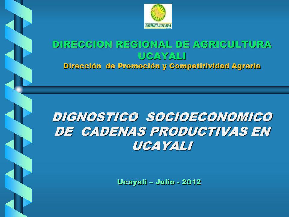 DIRECCION REGIONAL DE AGRICULTURA UCAYALI Dirección de Promoción y Competitividad Agraria DIGNOSTICO SOCIOECONOMICO DE CADENAS PRODUCTIVAS EN UCAYALI