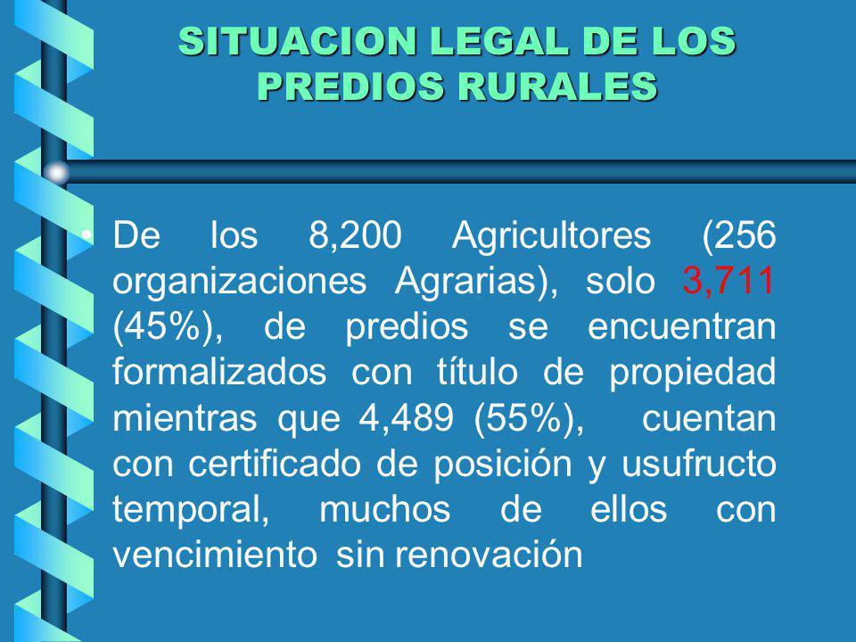 SITUACION LEGAL DE LOS PREDIOS RURALES De los 8,200 Agricultores (256 organizaciones Agrarias), solo 3,711 (45%), de predios se encuentran formalizado