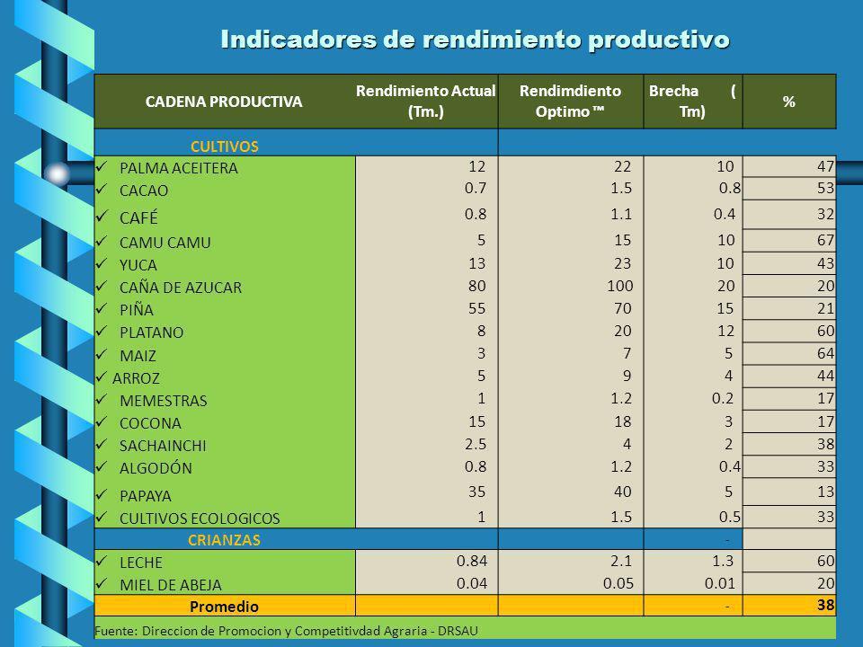 Indicadores de rendimiento productivo CADENA PRODUCTIVA Rendimiento Actual (Tm.) Rendimdiento Optimo Brecha ( Tm) % CULTIVOS PALMA ACEITERA 12 22 10 4