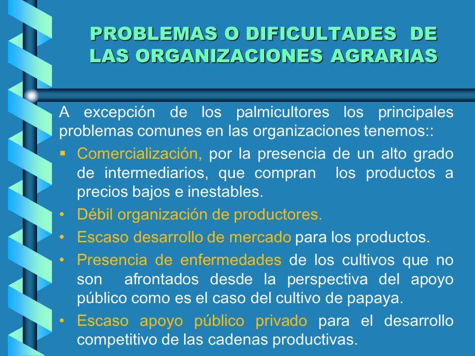 PROBLEMAS O DIFICULTADES DE LAS ORGANIZACIONES AGRARIAS A excepción de los palmicultores los principales problemas comunes en las organizaciones tenem
