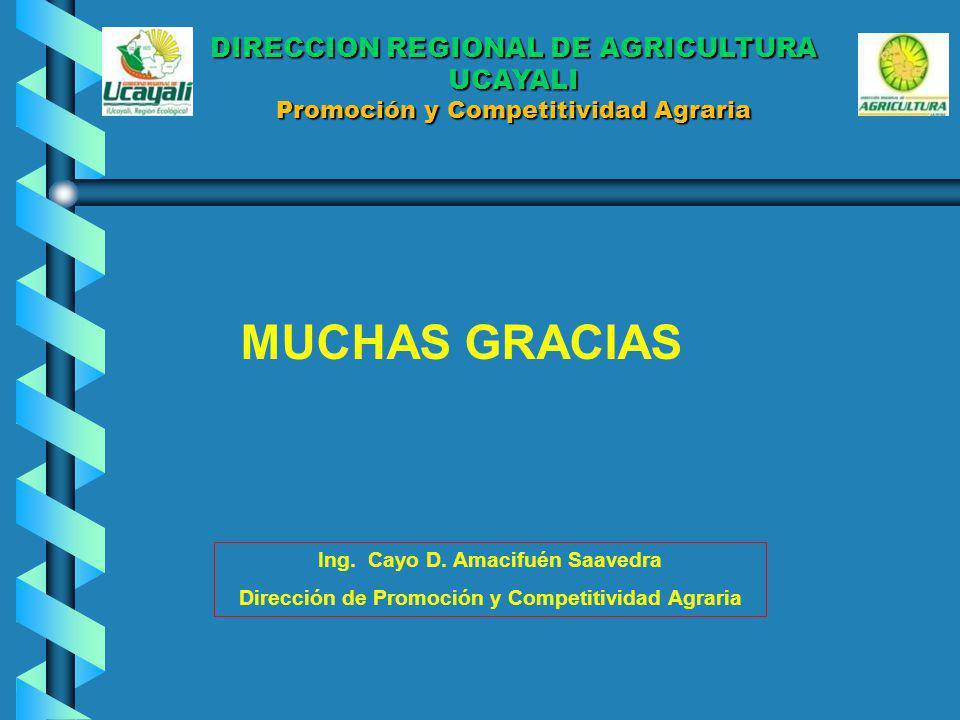MUCHAS GRACIAS Ing. Cayo D. Amacifuén Saavedra Dirección de Promoción y Competitividad Agraria DIRECCION REGIONAL DE AGRICULTURA UCAYALI Promoción y C