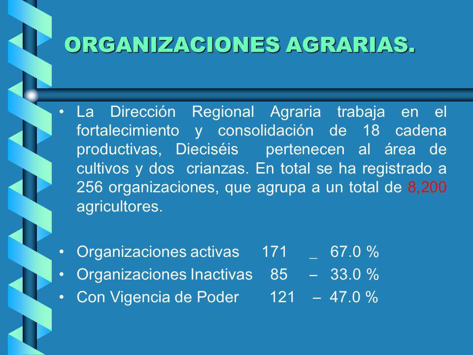 ORGANIZACIONES AGRARIAS. La Dirección Regional Agraria trabaja en el fortalecimiento y consolidación de 18 cadena productivas, Dieciséis pertenecen al