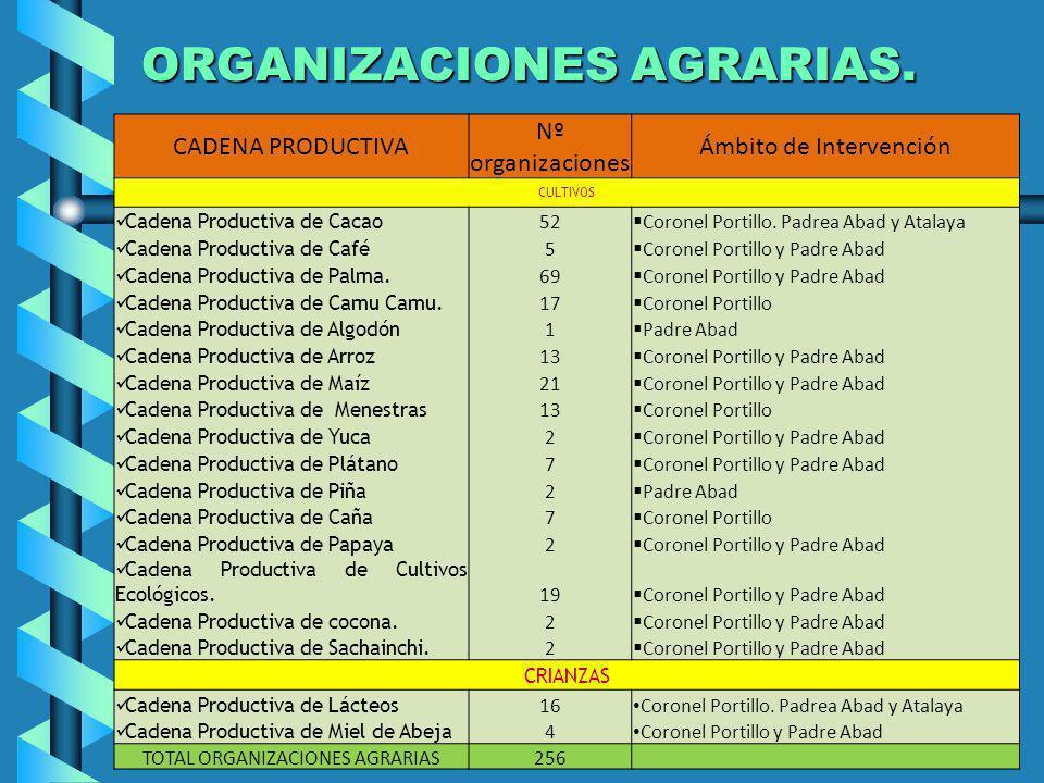 ORGANIZACIONES AGRARIAS. CADENA PRODUCTIVA Nº organizaciones Ámbito de Intervención CULTIVOS Cadena Productiva de Cacao 52 Coronel Portillo. Padrea Ab