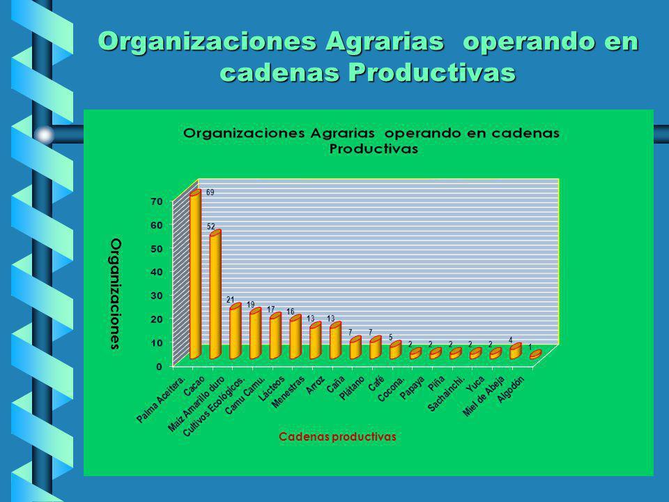 Cultura Asociativa Se ha registrado de las 256 organizaciones operando en cadenas productivas, 41 de ellas (16%), comercializan sus productos en forma asociada, focalizadas en las cadenas de Cacao, Leche, Miel, Palma aceitera, ArrozSe ha registrado de las 256 organizaciones operando en cadenas productivas, 41 de ellas (16%), comercializan sus productos en forma asociada, focalizadas en las cadenas de Cacao, Leche, Miel, Palma aceitera, Arroz
