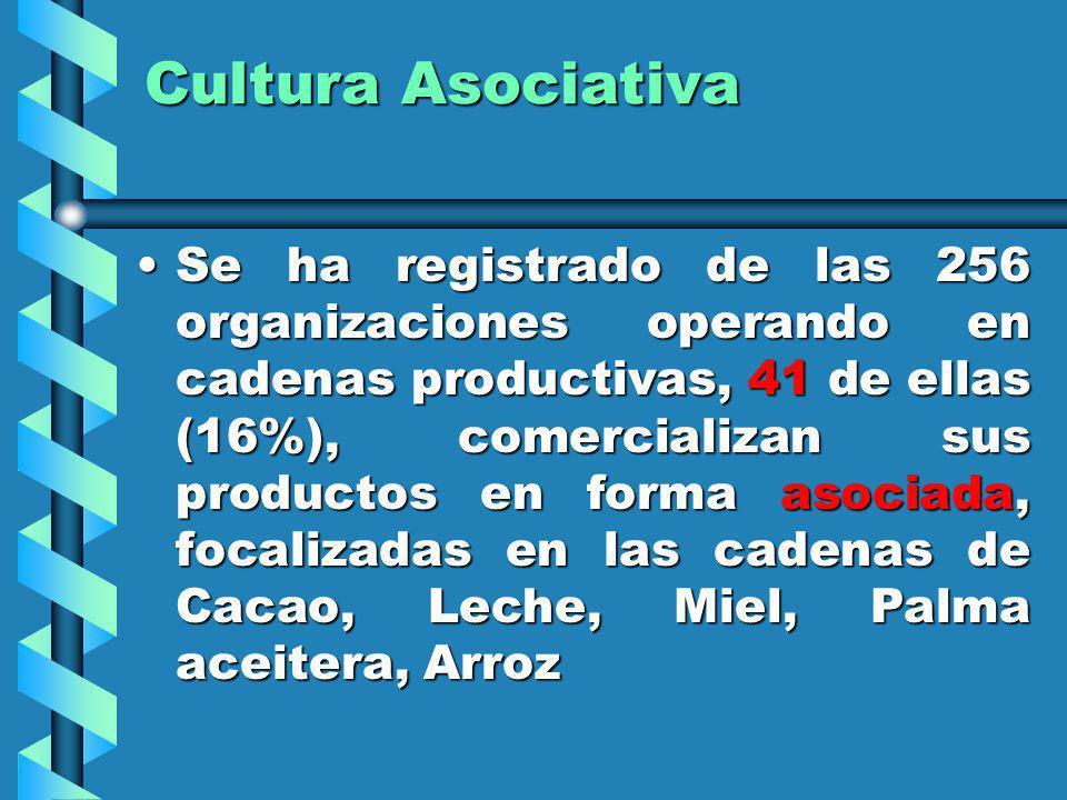 Cultura Asociativa Se ha registrado de las 256 organizaciones operando en cadenas productivas, 41 de ellas (16%), comercializan sus productos en forma
