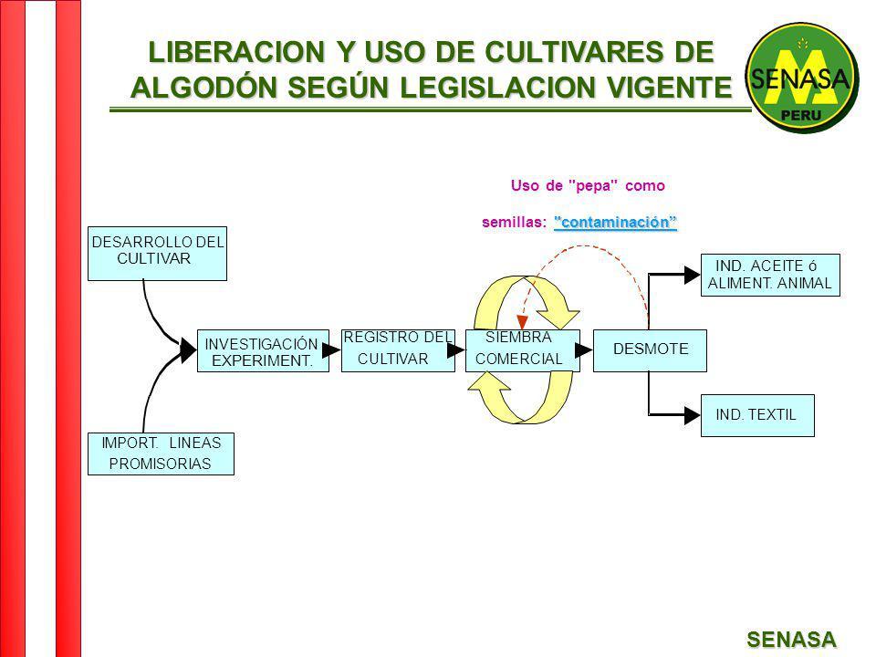 SENASA LIBERACION Y USO DE CULTIVARES DE ALGODÓN SEGÚN LEGISLACION VIGENTE DESARROLLO DEL CULTIVAR IMPORT. LINEAS PROMISORIAS INVESTIGACIÓN - EXPERIME