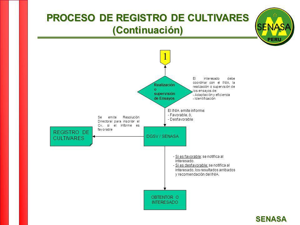 SENASA 1 Realización o supervisión de Ensayos DGSV / SENASA OBTENTOR O INTERESADO REGISTRO DE CULTIVARES El interesado debe coordinar con el INIA, la