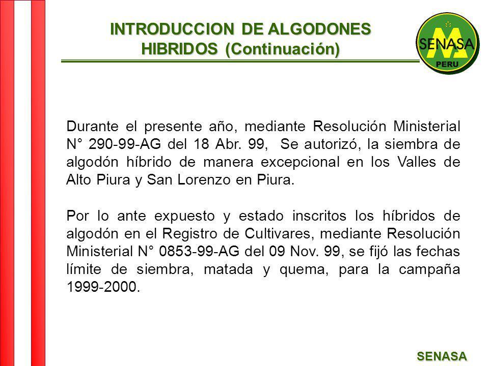 SENASA Durante el presente año, mediante Resolución Ministerial N° 290-99-AG del 18 Abr. 99, Se autorizó, la siembra de algodón híbrido de manera exce