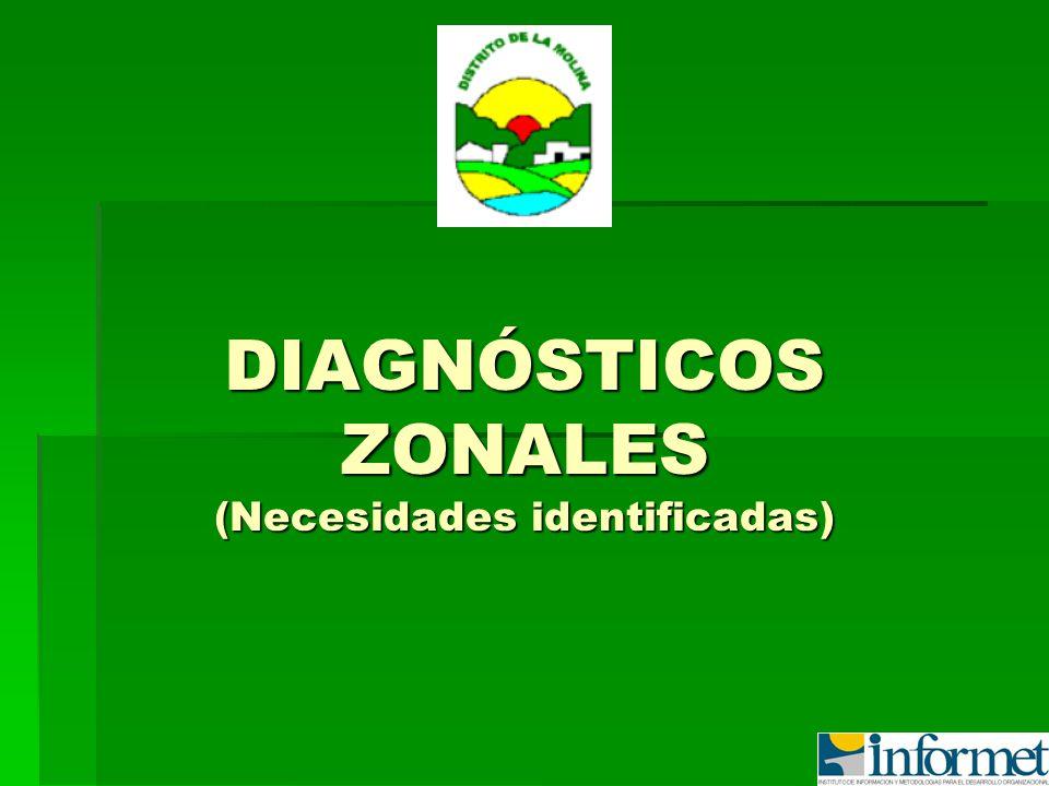 DIAGNÓSTICOS ZONALES (Necesidades identificadas)