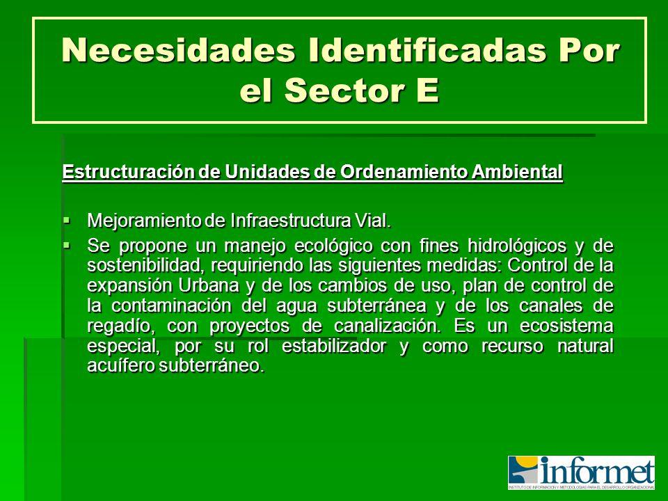 Necesidades Identificadas Por el Sector E Estructuración de Unidades de Ordenamiento Ambiental Mejoramiento de Infraestructura Vial. Mejoramiento de I
