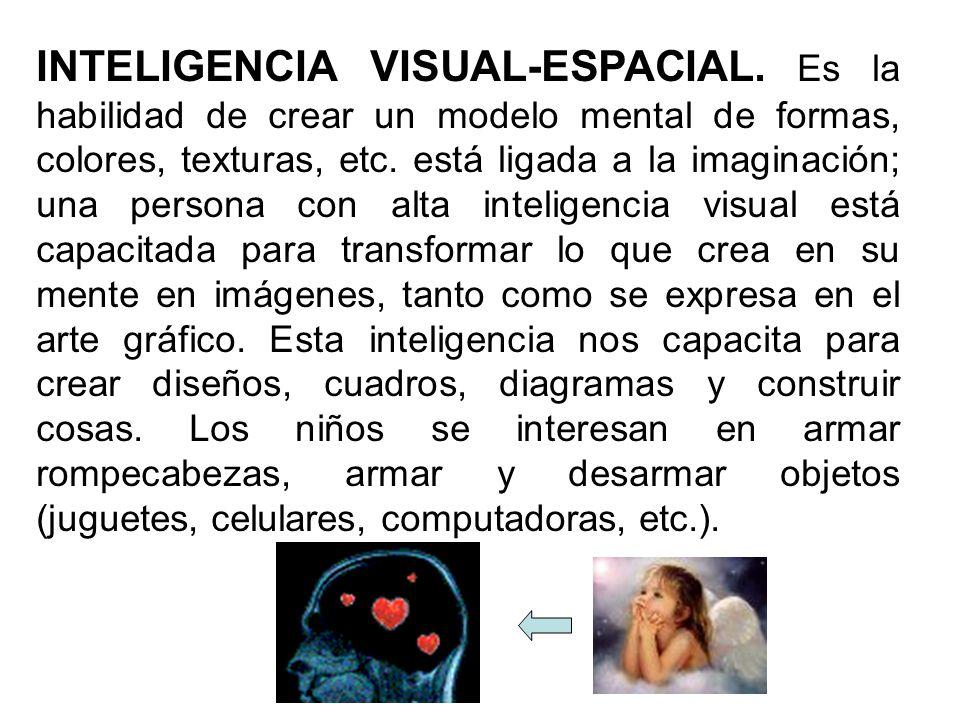 INTELIGENCIA VISUAL-ESPACIAL. Es la habilidad de crear un modelo mental de formas, colores, texturas, etc. está ligada a la imaginación; una persona c