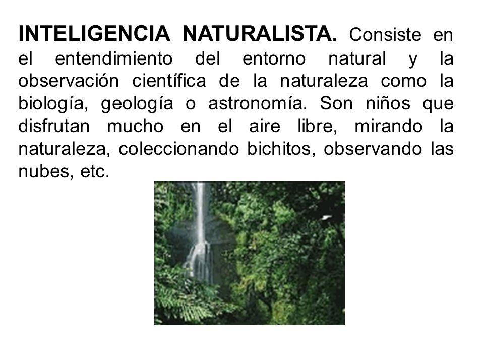 INTELIGENCIA NATURALISTA. Consiste en el entendimiento del entorno natural y la observación científica de la naturaleza como la biología, geología o a