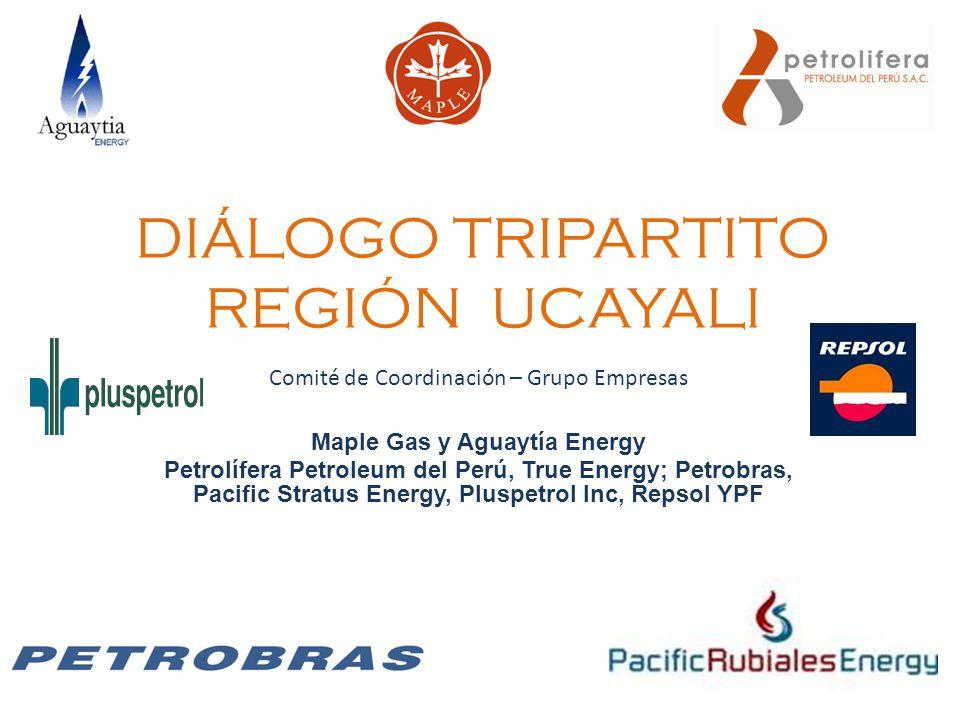 DIÁLOGO TRIPARTITO REGIÓN UCAYALI Comité de Coordinación – Grupo Empresas Maple Gas y Aguaytía Energy Petrolífera Petroleum del Perú, True Energy; Pet
