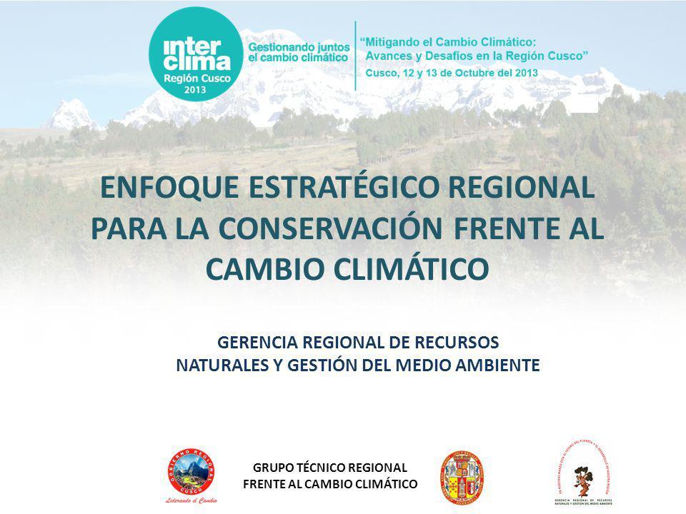 GRUPO TÉCNICO REGIONAL FRENTE AL CAMBIO CLIMÁTICO EL ENFOQUE Enfoque Estratégico Regional de Conservación Estudio Especializado de Servicios Ambientales GRRNGMA Estrategia Regional Forestal Estrategia Regional de Diversidad Biológica Estrategia Regional de Humedales y Recursos Hidrobiológicos Sistema Regional de Áreas de Conservación Estrategia de Alta Montaña Lista de especies amenazadas ESTRATEGIA REGIONAL FRENTE AL CLIMATICO – ERFCC CUSCO Estrategia de Biodiversidad