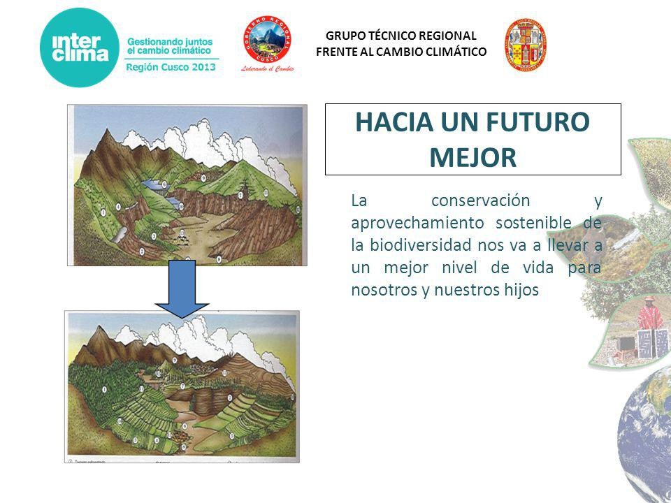 GRUPO TÉCNICO REGIONAL FRENTE AL CAMBIO CLIMÁTICO La conservación y aprovechamiento sostenible de la biodiversidad nos va a llevar a un mejor nivel de